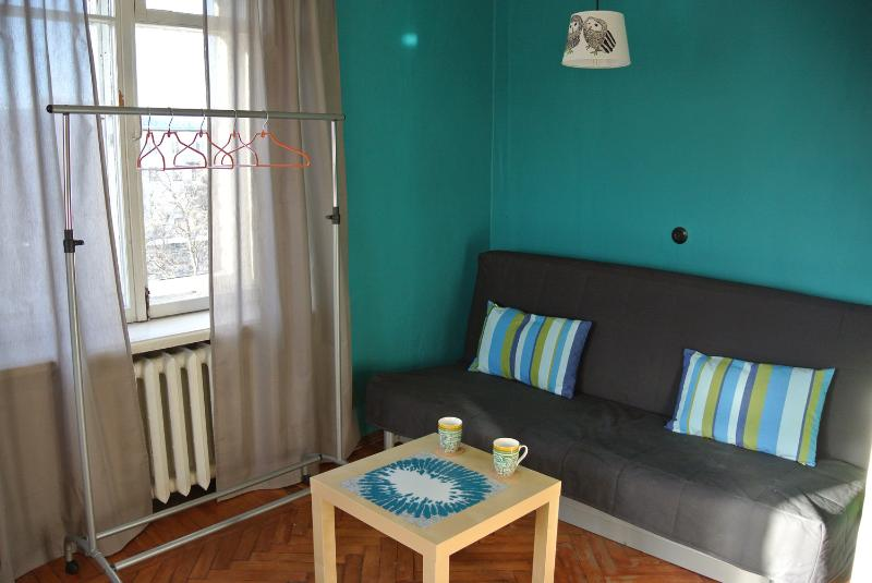 Living room with sofa-bed - Sunny artistic place - Saint Petersburg - rentals