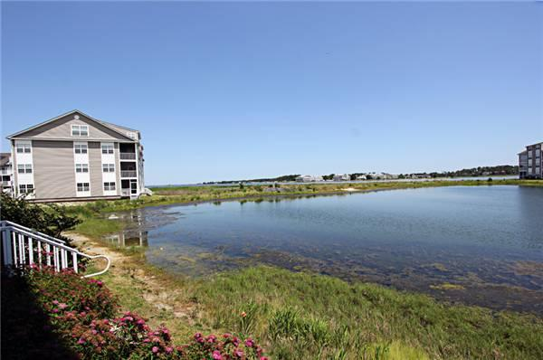 2501 Harbor Drive - Image 1 - Millville - rentals
