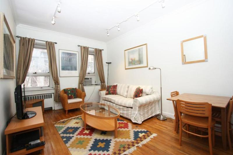 Living Room - Sun-Kissed One Bedroom Near UN in Upscale Place. - New York City - rentals