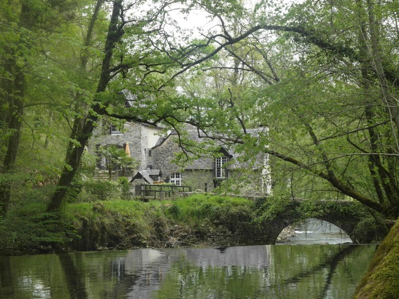 Private bridge and water mill. Enjoy trout fishing! - Watermill Pyrenees Pau, Aquitaine, Southern France - Eysus - rentals