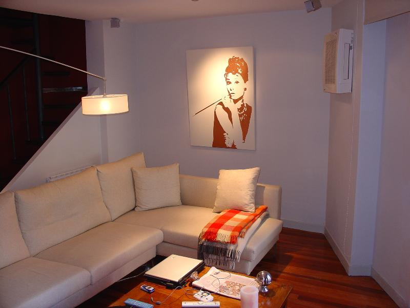 Modern duplex in the heart of Pamplona - Image 1 - Pamplona - rentals