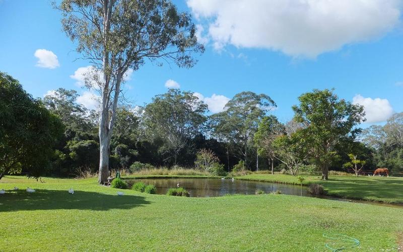 Backyard acreage - Bellmere on Richards Caboolture Sunshine Coast - Caboolture - rentals