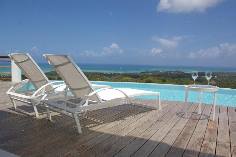 Superb luxury villa for 12 people with ocean view - Image 1 - Las Terrenas - rentals