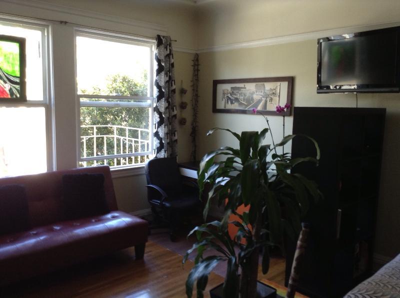 Extraordinary Furnished Studio - Image 1 - San Francisco - rentals