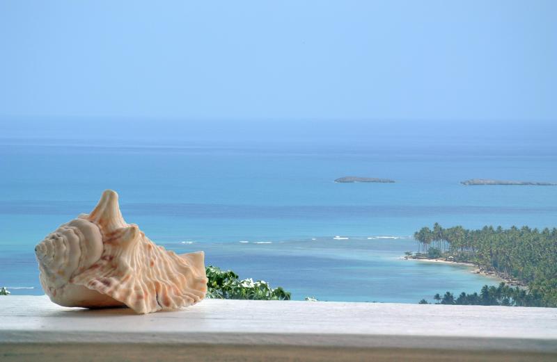 Gorgeous view-Playas Coson&Bonita - Image 1 - Las Terrenas - rentals