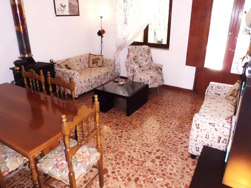 The bright living room - Cosy 1 bdr garden flat, 5 min from beach, Tuscany - Torre del Lago Puccini - rentals