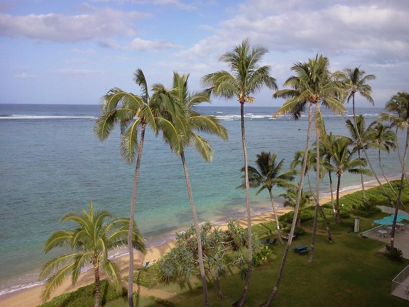 Beach and Palms - View from Living Area - Luxury Penthouse on Beach with Breathtaking View - Punaluu - rentals