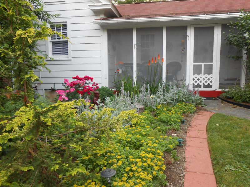 Screened-in porch overlooking Zen garden - Just Like Heaven Carriage House - Winchester - rentals