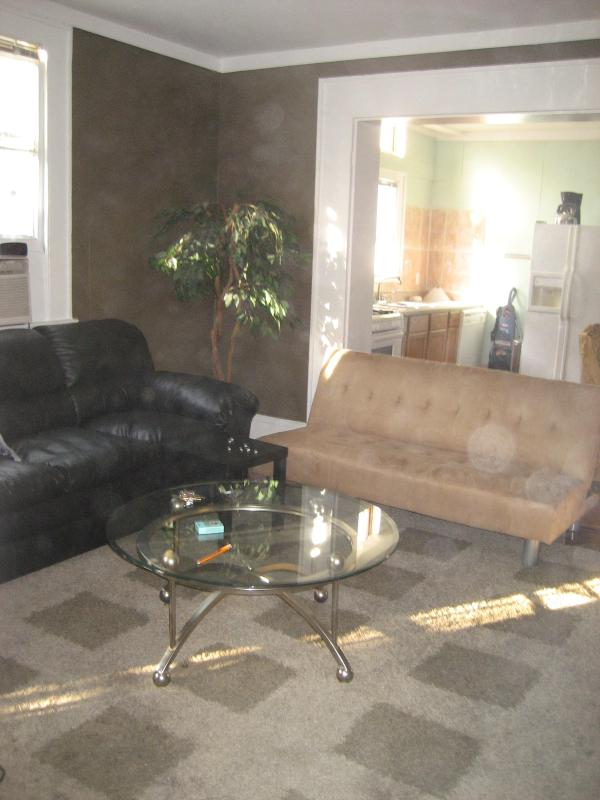 living room - 1 blk off St Charles close to everything - New Orleans - rentals