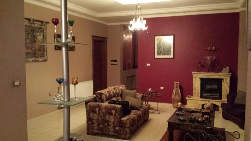 Gorgeous Full level and View apt . - Image 1 - Amman - rentals