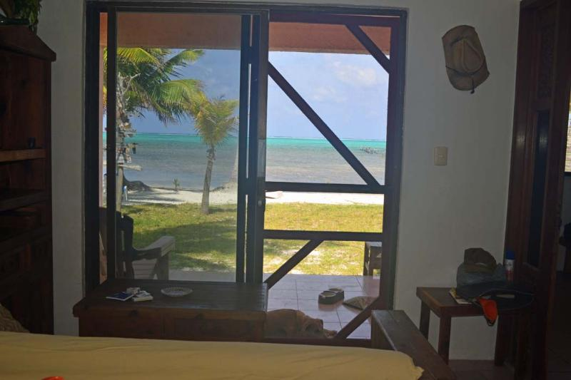 View from Downstairs - The Pink House By the Sea - Xcalak - rentals
