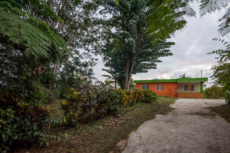 Utuado Mountain House - Casa Altura  (Sleeps 1-6) - Image 1 - Utuado - rentals