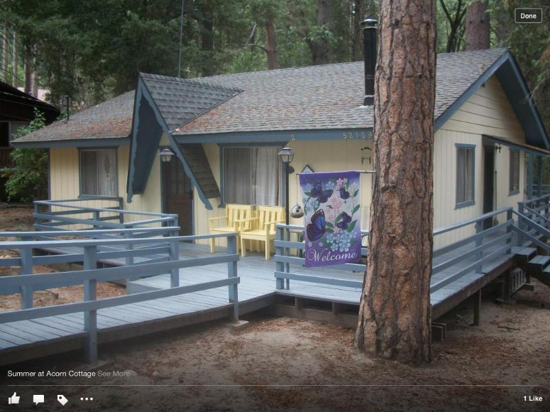 Street View - Acorn Cottage in the Pines of Idyllwild - Idyllwild - rentals
