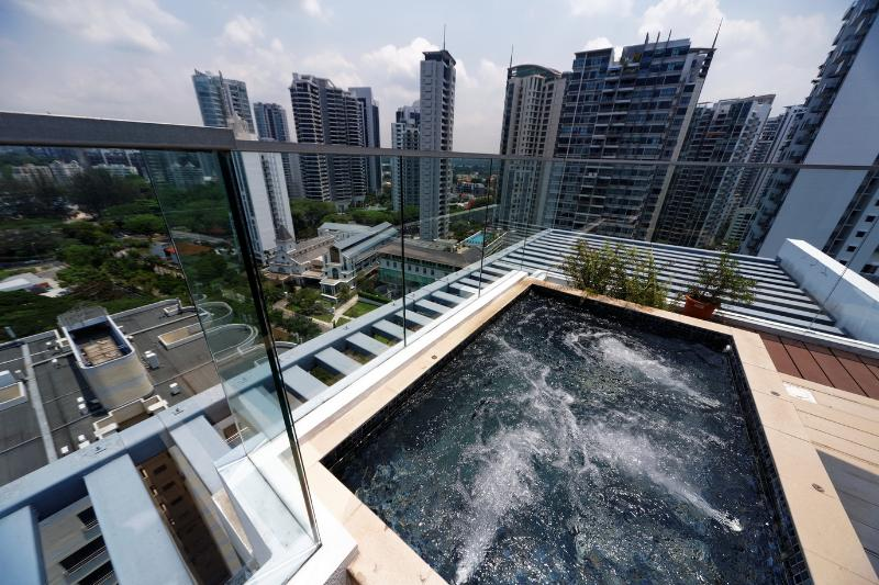 Rare Outdoor Jacuzzi in the open - 2 Bedroom Penthouse Next to Newton Circus MRT - Singapore - rentals