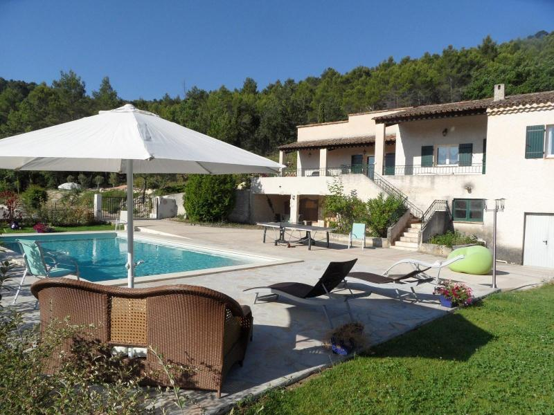 The villa - Villa with  private pool near Aix en Provence - Aix-en-Provence - rentals