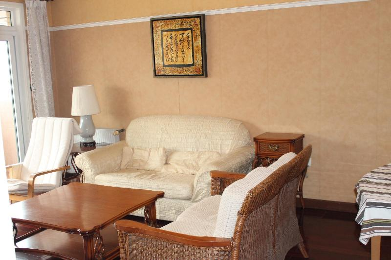 Guest room face to South - 3 bedrooms Shanghai downtown aparment - Shanghai - rentals