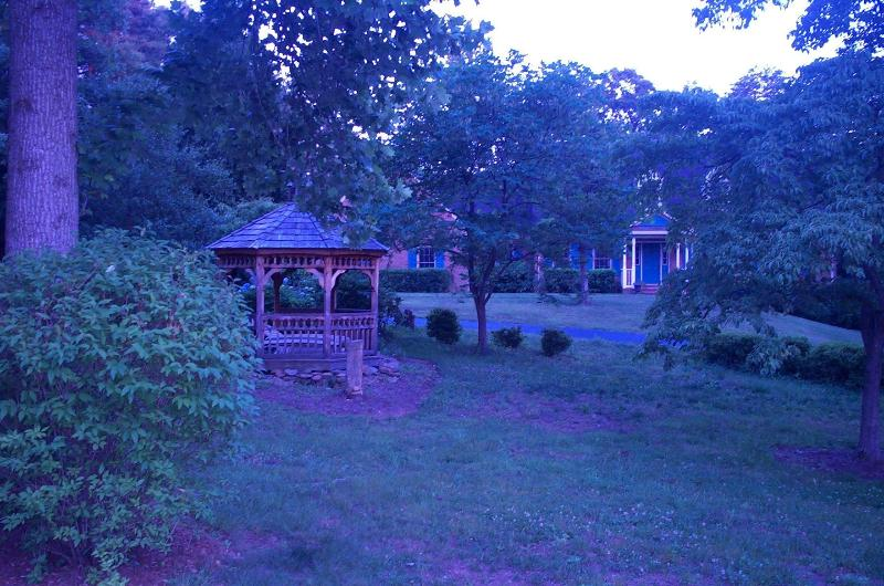 Front Yard - Large Colonial Home Available on Weekends - Charlottesville - rentals