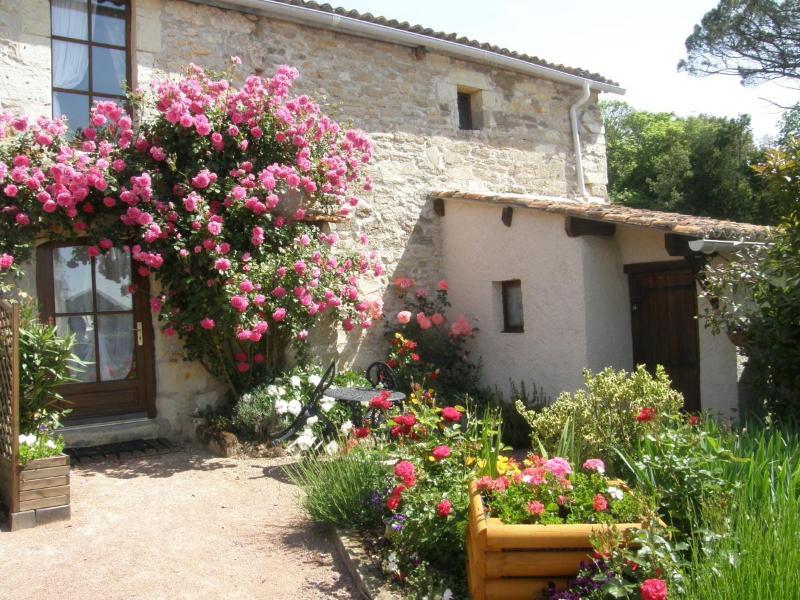 Romantic cottage set amongst vineyards - A Romantic cottage for TWO set amoungst vineyards. - Les Verchers-sur-Layon - rentals