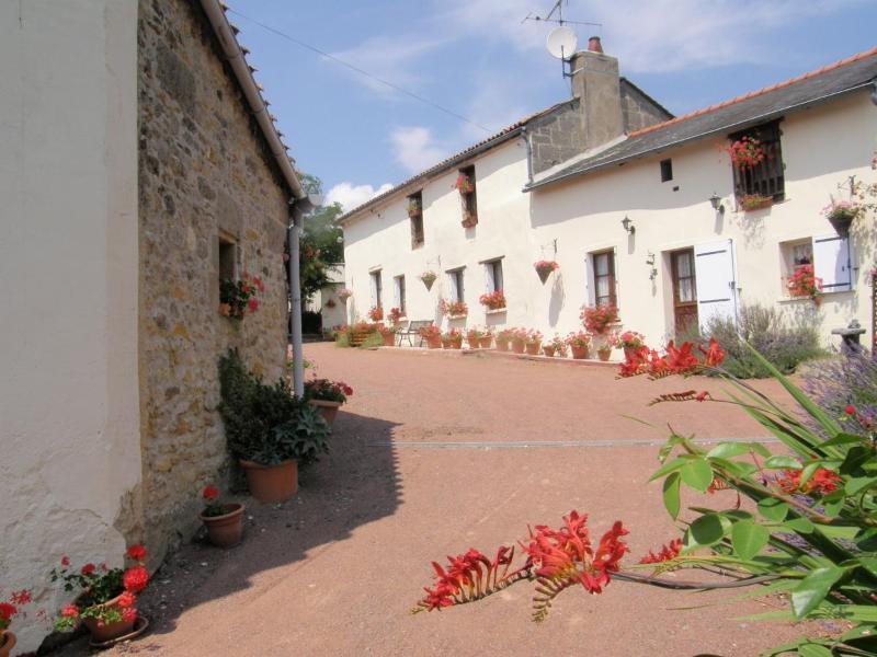 Orignal farmhouse set  amongst vineyards - FARMHOUSE sleeps 6 character & charm FREE WIFI - Les Verchers-sur-Layon - rentals