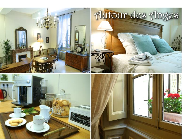 Very charming apartment in Avignon, Provence - Image 1 - Avignon - rentals