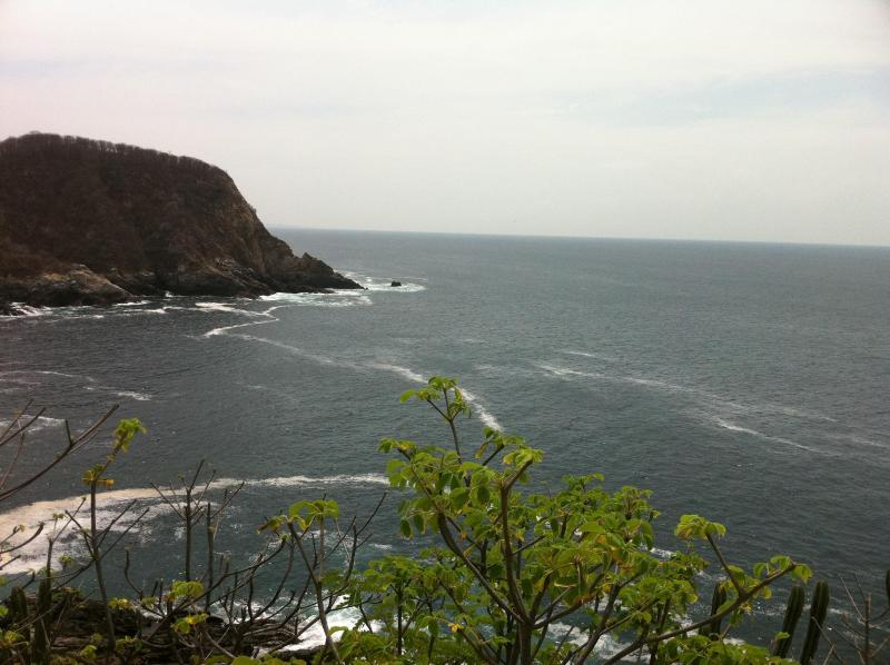 Balcony View - View Point at Puerto Angel, Imagine your View. - San Agustinillo - rentals