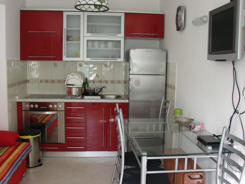 Villa Bruna apartment with terrace - Image 1 - Rab - rentals