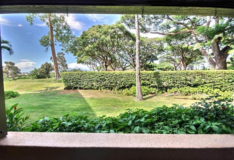 Beautiful well manicured garden view off the lanai.  - Kaanapali Royal #KRO-Q102 Kaanapali, Maui, Hawaii - Ka'anapali - rentals