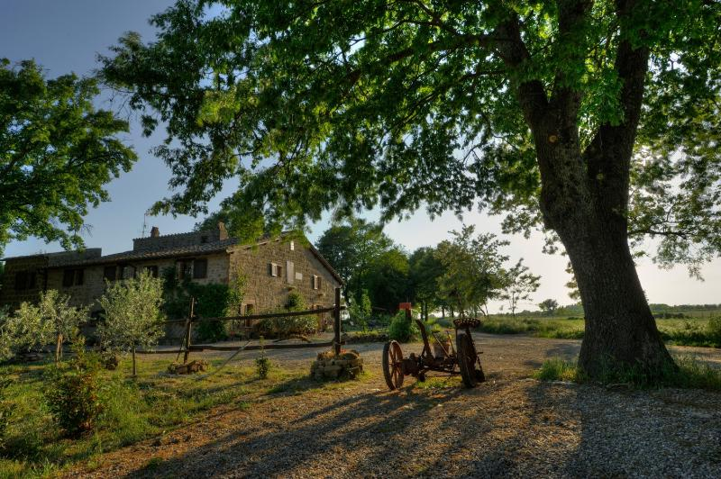 Sant'Egle - Organic Farm Sant'Egle - Sorano - rentals