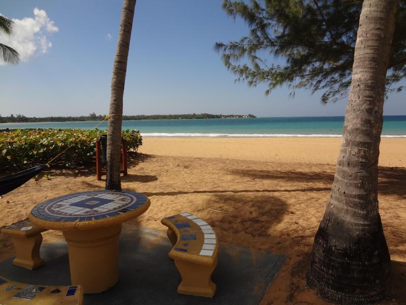 Beach Front Apartment - Image 1 - Rio Grande - rentals