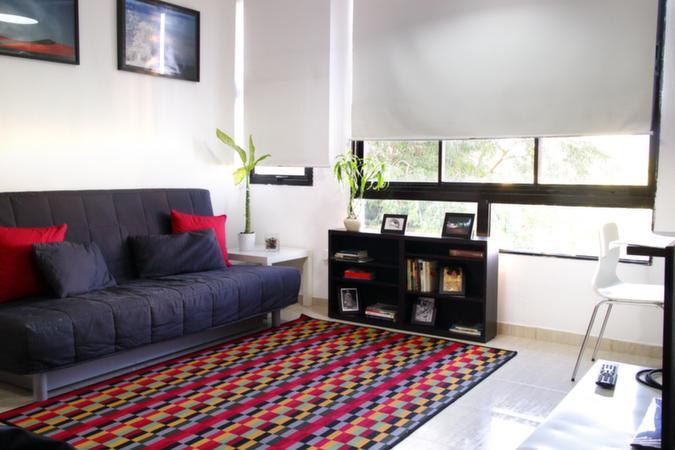 1 bedroom apartment in the  Downtown Santo Domingo - Image 1 - Santo Domingo - rentals