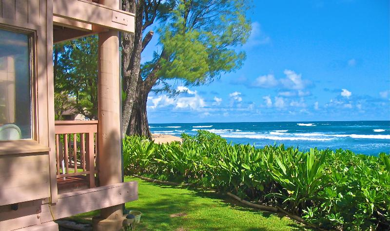 Yes...Your Beachfront Studio Awaits - Tropical Beachfront Studio - House Of Dreams Kauai - Haena - rentals