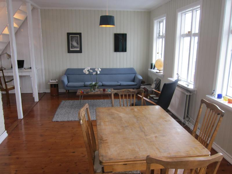 Living Room - Beautiful Apartment in Downtown Reykjavik - Reykjavik - rentals