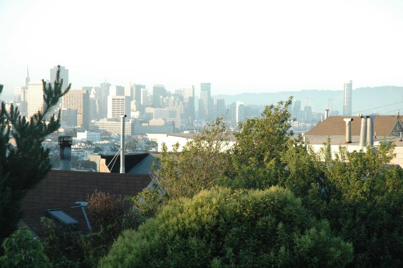 City View from Rear Deck - 3BR-Noe/Castro-Views, Modern Living - San Francisco - rentals