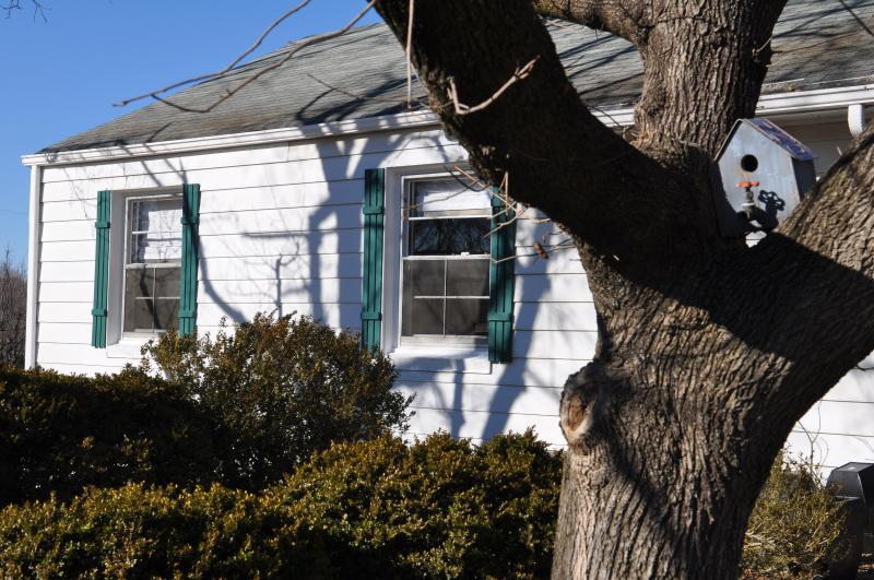 Welcome to Stonehenge Cottage - Cozy Belmont Cottage Walking Dist to Downtown Mall - Bacova - rentals