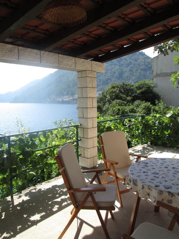 Apartment Orso Mljet Island - Image 1 - Sveti Martin na Muri - rentals