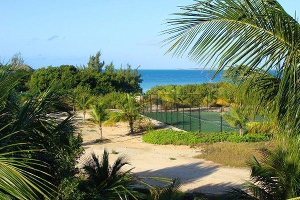 Surrounded by palm trees on an acre of Sunset Bay- a beautiful beach, known for privacy. IE ETO - Image 1 - Ocean Point - rentals