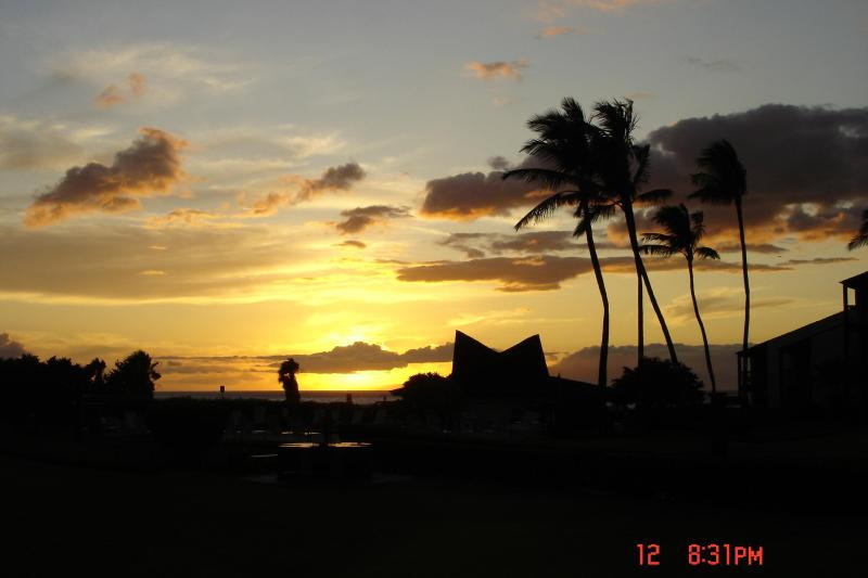 Maui Sunset - Hale Kamaole #124  - South kihei - Kihei - rentals