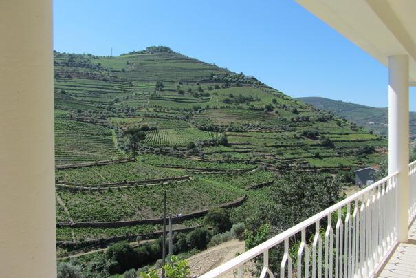 View from the balcony - Casa Amarela - Douro Wine Region - Cardigos - rentals