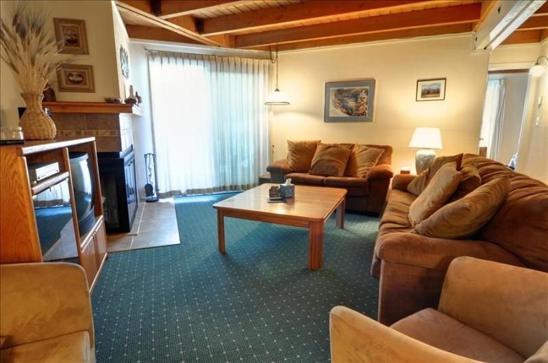 TREEHOUSE 101: 2 Bed/2 Bath, Perfect for the Budget Minded Family, Large Clubhouse, Hiking, Free Bus - Image 1 - Silverthorne - rentals