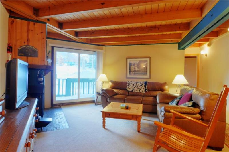 TREEHOUSE 107: Ground Floor 2 Bed/2 Bath, Great Location for Summer & Winter, Wifi, Large Clubhouse - Image 1 - Silverthorne - rentals