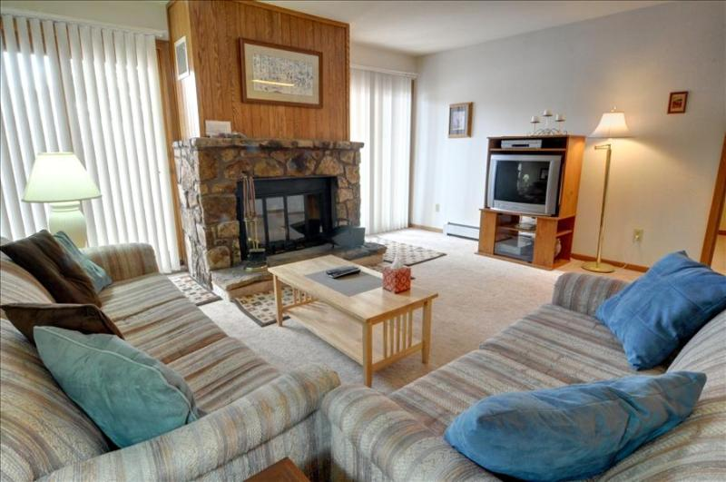 BUFFALO VILLAGE 101: 2 Bed/2 Bath, Sleeps 8, Elevator, Wi-Fi, All of Mother Nature Only Steps Away - Image 1 - Silverthorne - rentals