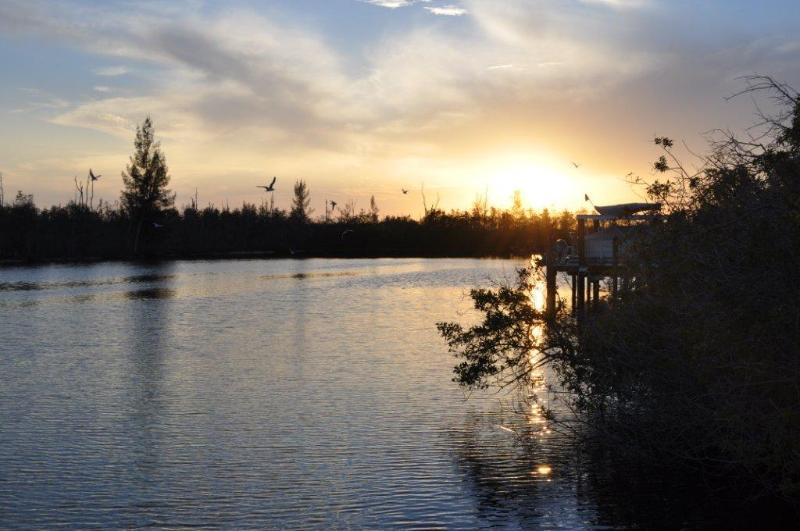 Sunset on the Spreader Canal from the dock. - Canal front-pool home facing unbuildable mangroves - Cape Coral - rentals