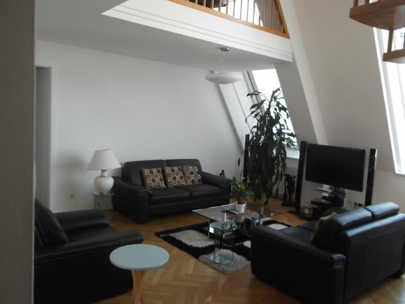 Well furnished Apartment for short term rent - Image 1 - Vienna - rentals