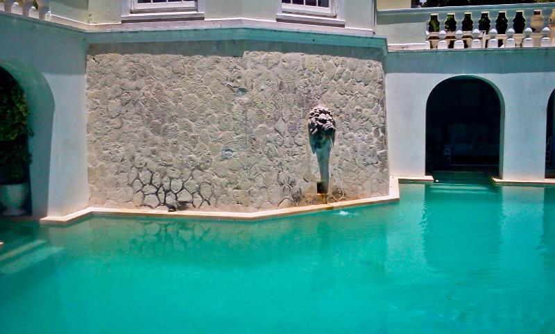 9ft deep circle pool - Birdie 'ill Villa - Port Antonio - rentals