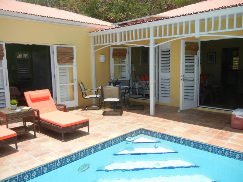 Pool and deck - Luxury East End Villa - Private Pool - 2 BR/2 Bath - Christiansted - rentals