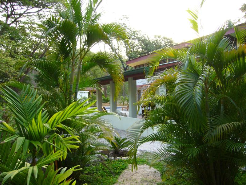 beautiful jungle house very close to beach - Nosara natural: art, pool, private+secure!monkeys! - Nosara - rentals