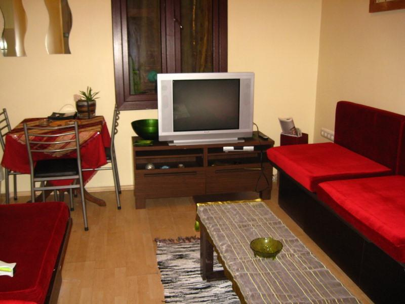 side of the salon with 2long coachs and big tv - 3+1 Big house on istiklal street-Taksim-istanbul - Istanbul - rentals