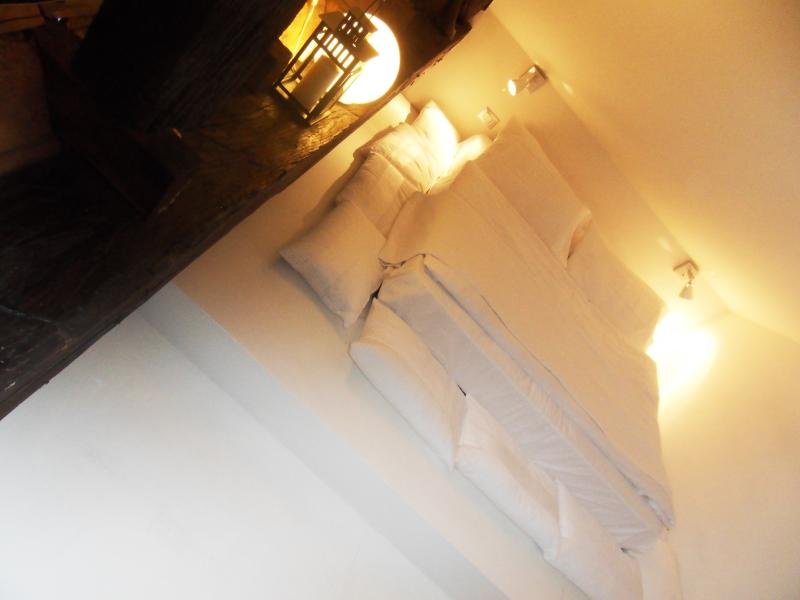 Loft design in the historic heart of Turin - Image 1 - Turin - rentals