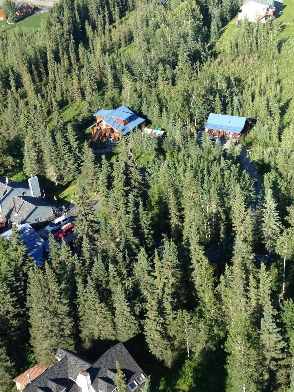 Caribou Crossing Cabins Wilderness Retreat - Kenai Peninsula Hand-crafted Alaskan Log Cabins - Soldotna - rentals
