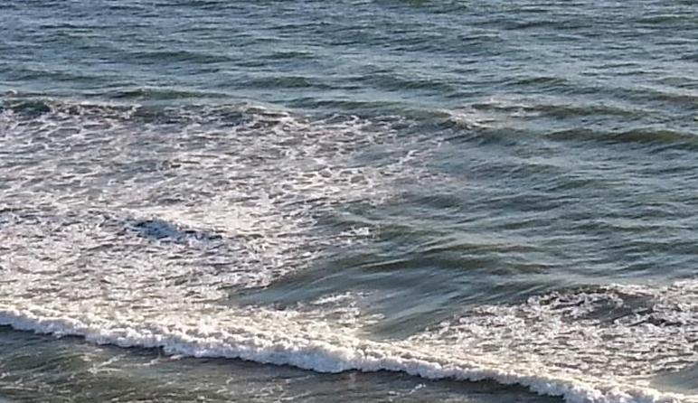 Ocean-Front Fully remodeled 2Bd Condo- Walk to Pie - Image 1 - San Clemente - rentals